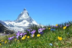 How To Retire in Switzerland as a U.S. Citizen